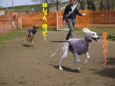 004_convert_20120403204013