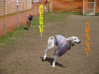 005_convert_20120403204053