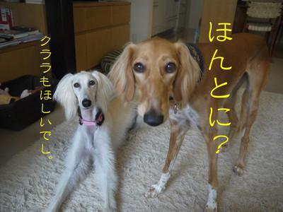 037_convert_20120705152718