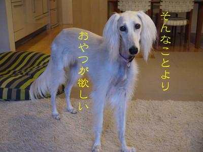 032_convert_20120922155902